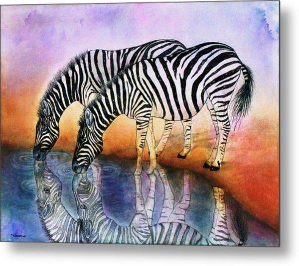 Zebra Reflections Metal Print
