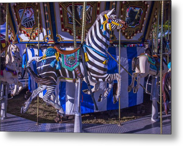 Zebra Ride Metal Print