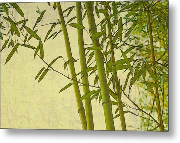 Zen Bamboo Abstract I Metal Print
