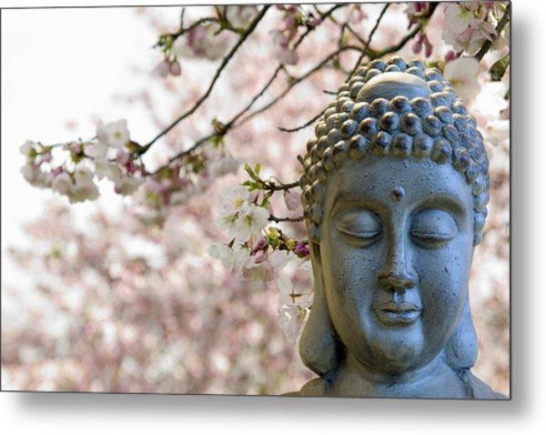 Zen Buddha Meditating Under Cherry Blossom Trees Metal Print