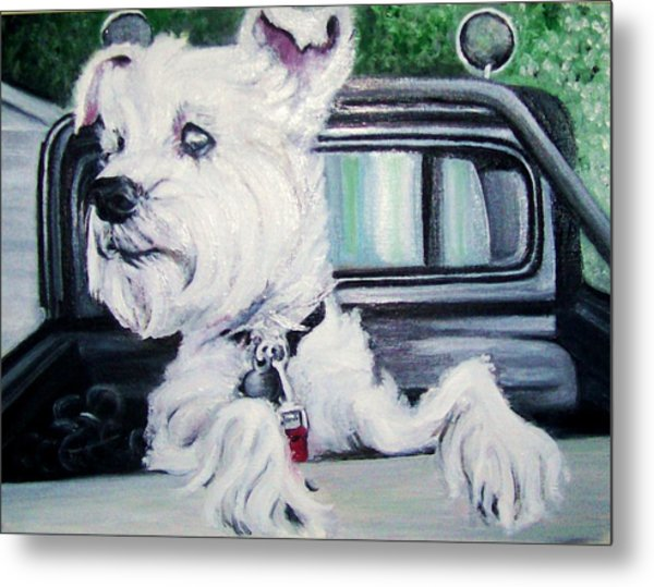 Zoey Waits For A Ride Metal Print