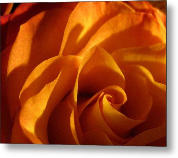 Zowie Rose Metal Print