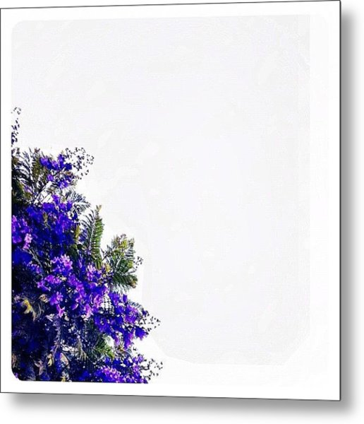 Corner Bouquet Metal Print
