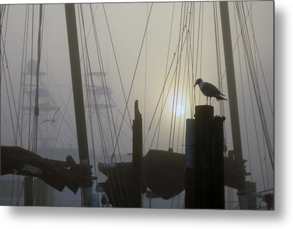 Early Morning At The Boat Docks Metal Print