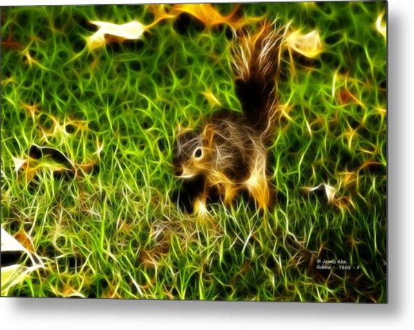 - Fractal - Pointer - Robbie The Squirrel Metal Print