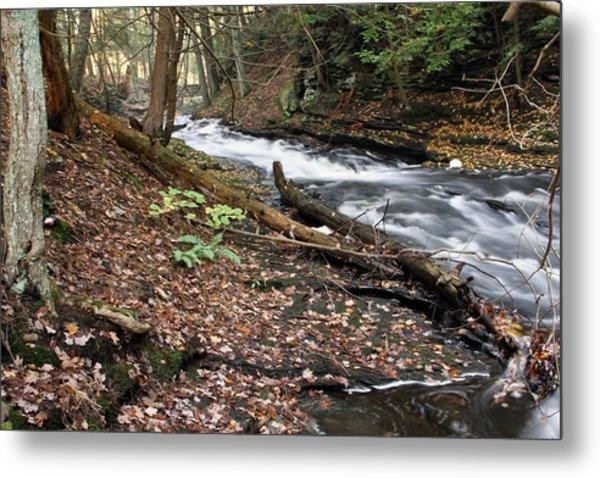 River Below Grayville Falls 2 Metal Print