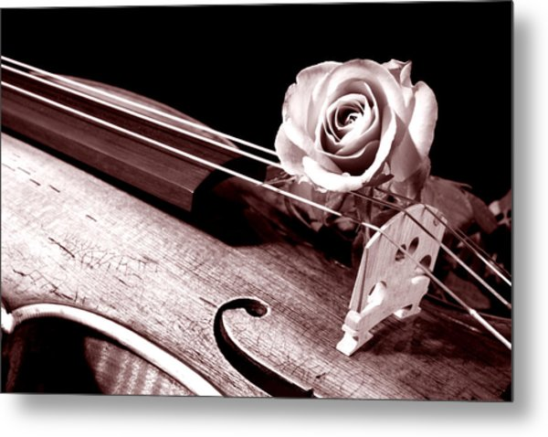 Rose Violin Viola Metal Print