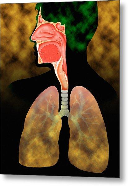 Air Pollution Metal Print by David Gifford
