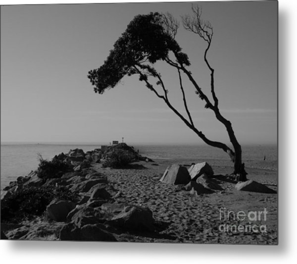 Alone Time Metal Print