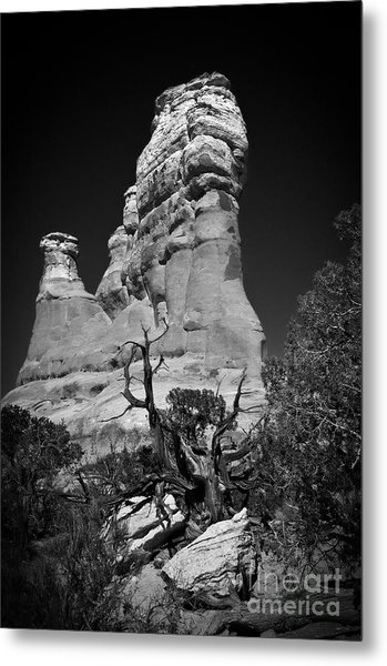 Arches National Park Bw Metal Print