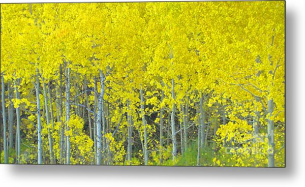 Aspen Power Metal Print