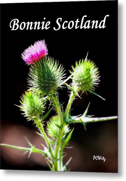 Bonnie Scotland Metal Print