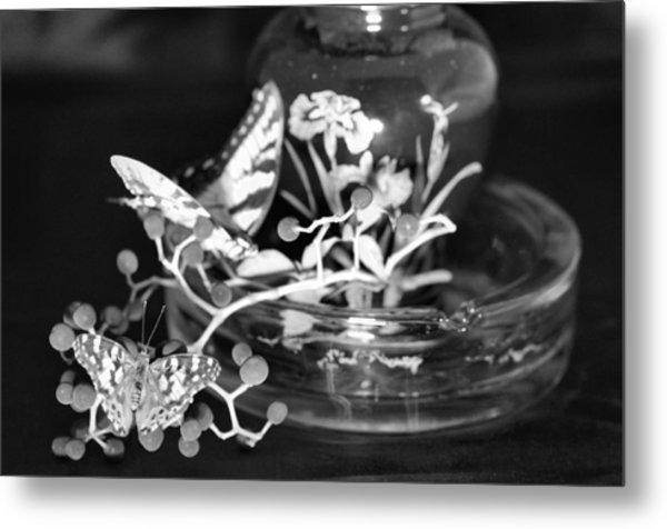 Butterflys Metal Print by Gerald Kloss