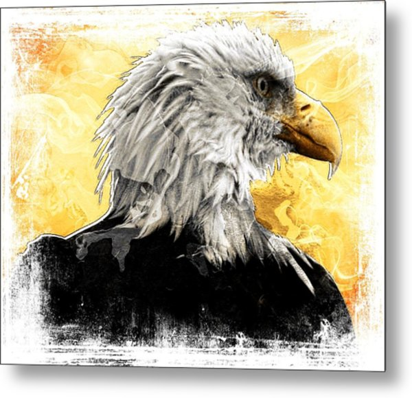Eagle 6 Metal Print by Carrie OBrien Sibley