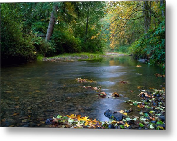 Fly Fisherman's Dilemma  Metal Print by Clifford Crawford