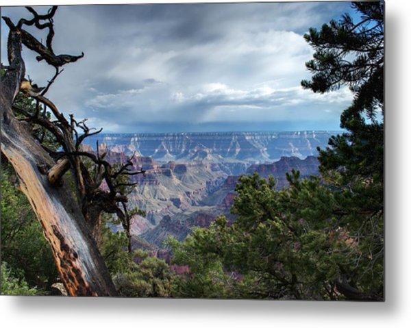 Grand Canyon North Rim After A Storm Metal Print by C Thomas Willard