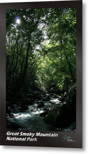 Great Smoky Mountains Np 007 Metal Print by Charles Fox