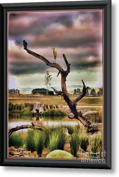 Hdr Wetlands Metal Print
