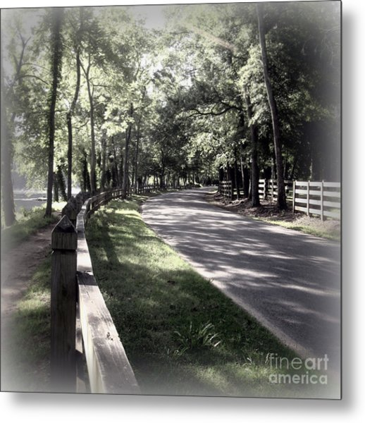 In My Dream The Road Less Traveled Metal Print by Nancy Dole McGuigan