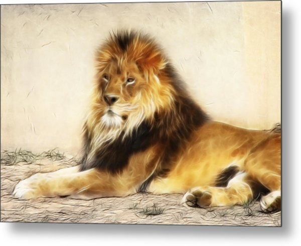 King Metal Print by Tilly Williams