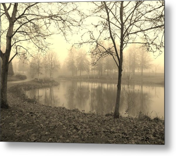 Mist Metal Print by Amy Norden