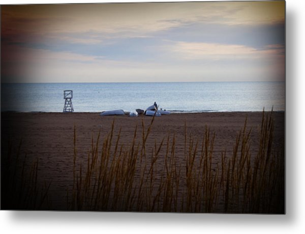 Morning At The Beach Metal Print