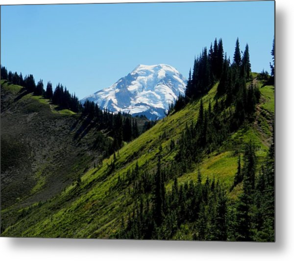 Mount Baker From The Skyline Divide Metal Print