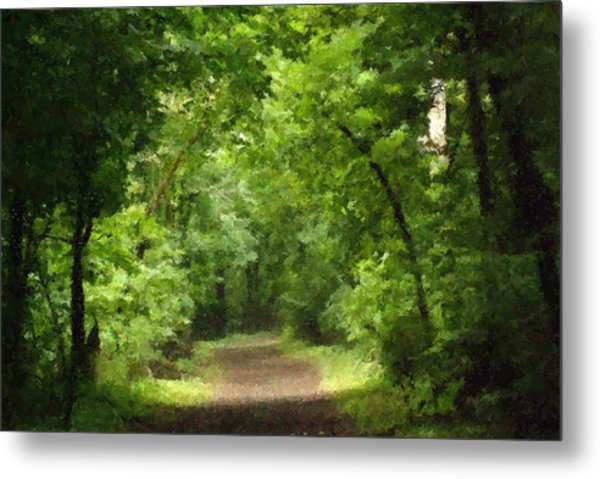 Path To Serenity Metal Print by Shellie and Steve Hill