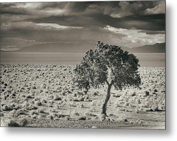Pyramid Lake, Nevada, Usa Metal Print by Mel Curtis
