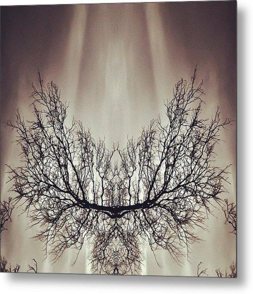 #symmetry #symmetrical #mirror Metal Print
