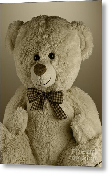 Teddy Bear Metal Print by Blink Images