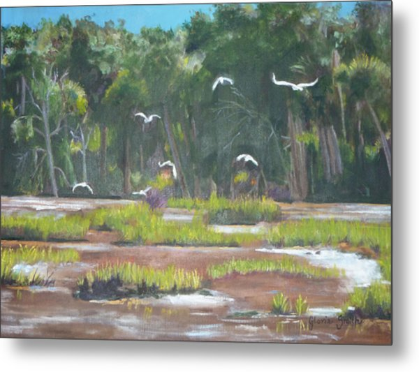 The Marshes Metal Print