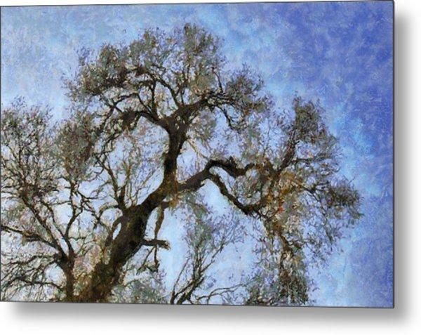 Tree Metal Print by Algimantas Gavenauskas