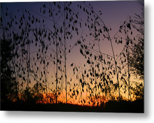 Twilight II Metal Print by Monika A Leon