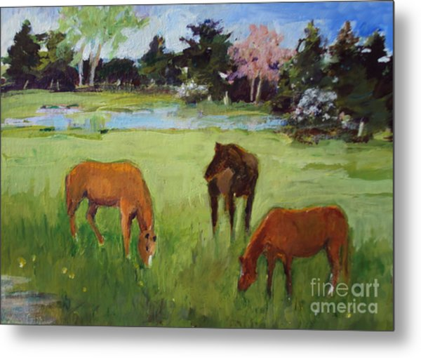 Two Chestnut One Bay Metal Print
