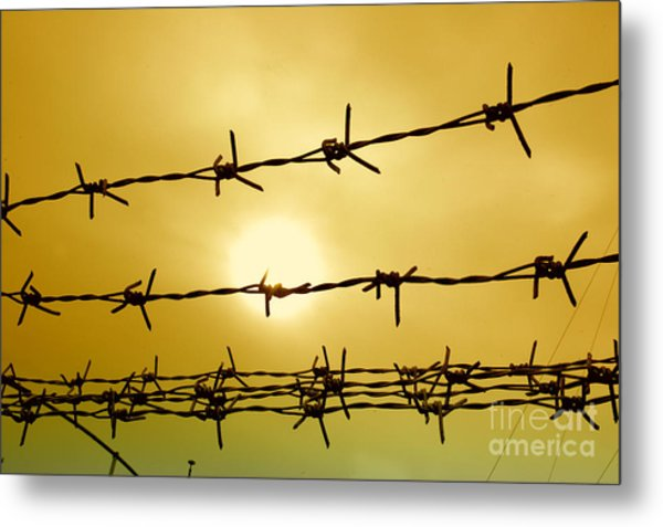 Wire Fence Metal Print by Antoni Halim