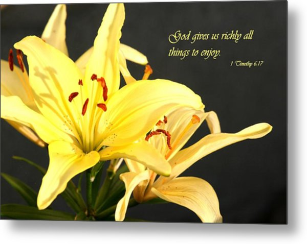 1st Timothy Flower Metal Print by Mike Lytle