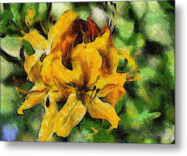 Azaleas In Bloom Metal Print