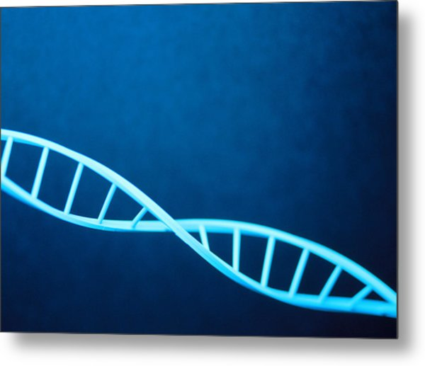 Dna Helix Metal Print by Lawrence Lawry