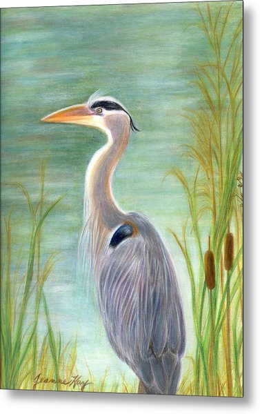 Great Blue Heron Watches By Pond Metal Print