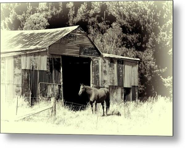 Horse And Old Barn Metal Print