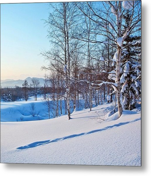 Love This Picture? Check Out My Gallery Metal Print