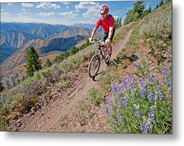 Mountain Bike Metal Print by Elijah Weber