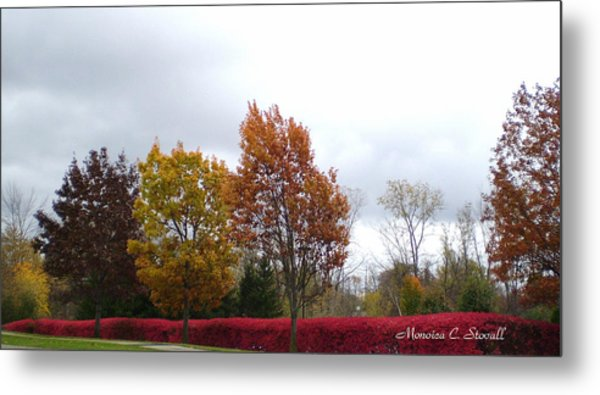 Fall Colors Collection - Michigan Metal Print