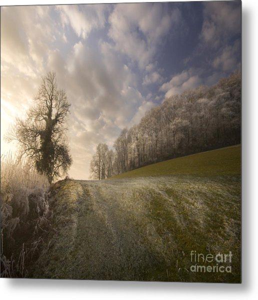 Frosty Landscape Metal Print by Angel Ciesniarska