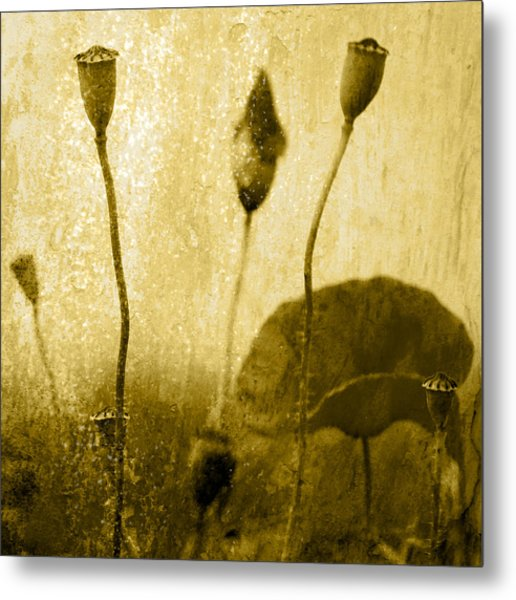 Poppy Art Image Metal Print by Falko Follert