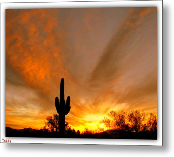 A Beautiful Start To The Day Metal Print