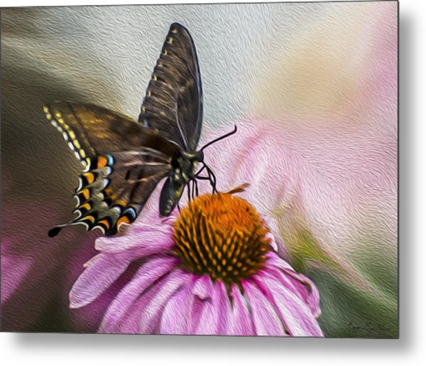 A Butterfly's Magical Moment Metal Print