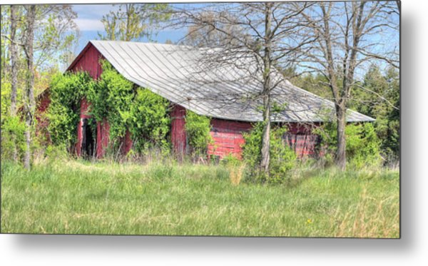 A Country Spring Metal Print by JC Findley