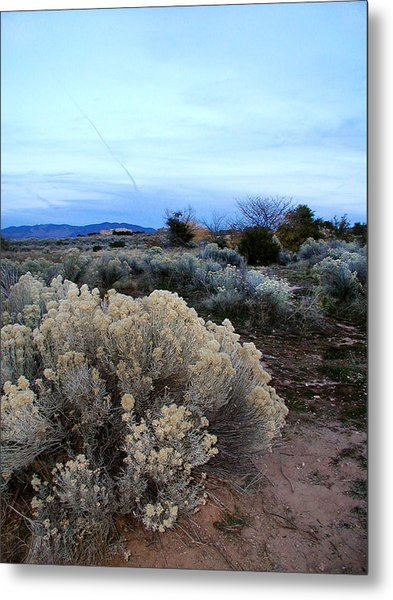 A Desert View After Sunset Metal Print